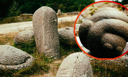 These 'Living Stones' in Romania Grow Over 10 Meters Tall And Are Able To Move, Breathe and Reproduce