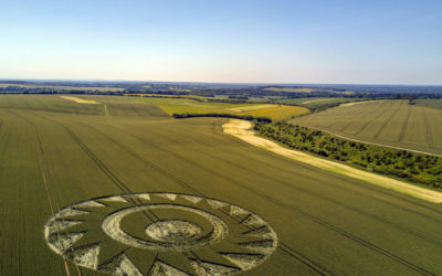 Crop Circle – Cheesefoot Head, Nr Winchester, Hampshire. Reported 17th June
