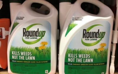 Monsanto's Roundup goes on trial with billions at stake [VIDEO]