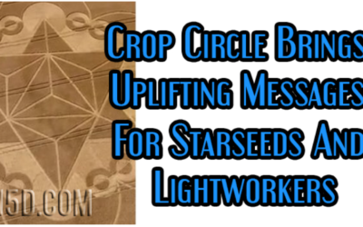 Crop Circle Brings Uplifting Messages For Starseeds And Lightworkers [w/VIDEO]