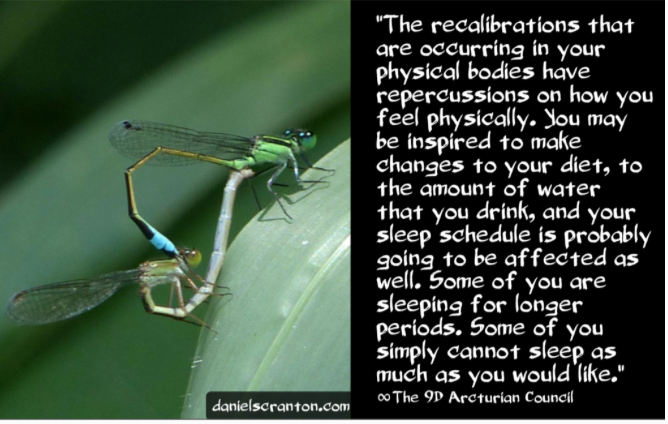Physical Recalibrations ∞The 9th Dimensional Arcturian Council