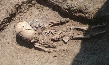 2,000-Year-Old Toddler Skeleton with Elongated Skull Unearthed in Crimea