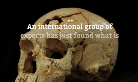 13-million-year-old skull answers questions about the origins of the human species