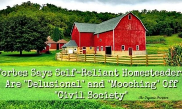 "Forbes Says Self-Reliant Homesteaders Are ""Delusional"" And ""Mooching"" Off ""Civil Society"""
