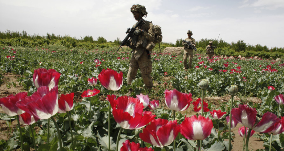 It's the opium, stupid: 'Afghan surge guarantees CIA black-ops budget boost'