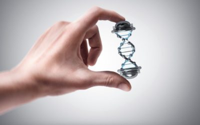 Ancestry.com takes DNA ownership rights from customers and their relatives
