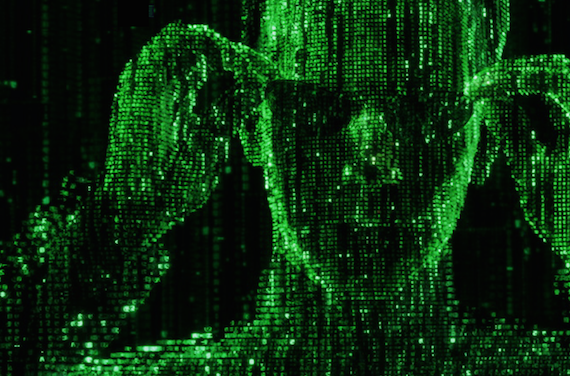 Mysterious Murders and The Matrix