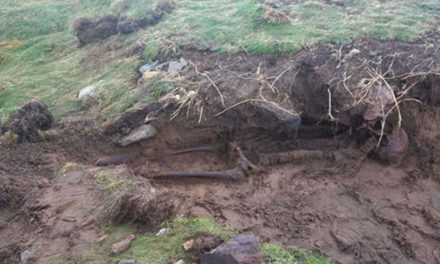 After the Storm: Hurricane Ophelia Reveals Ancient Mystery Skeleton in Ireland