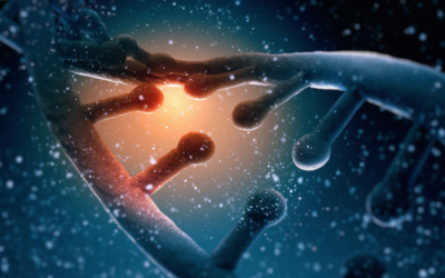 GAME-CHANGING STUDY: EPIGENETIC MEMORIES ARE PASSED DOWN 14 SUCCESSIVE GENERATIONS