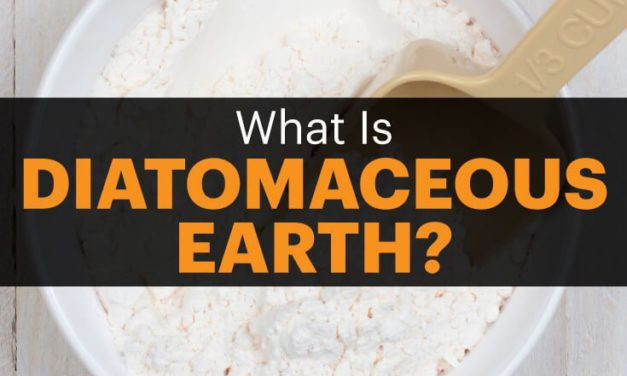 6 Proven Diatomaceous Earth Uses and Benefits