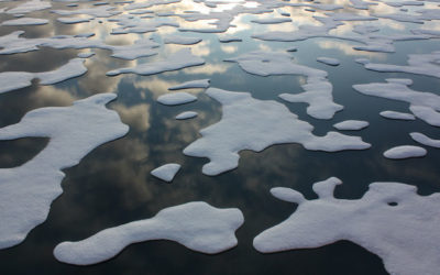 Nations agree to ban fishing in Arctic Ocean for at least 16 years