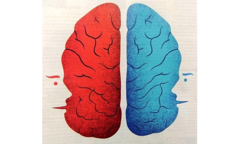 The curious case of the corpus callosum: Does the brain have two minds?