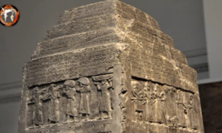 Hidden Scientific Knowledge of the body, an Anunnaki Perspective [VIDEO]