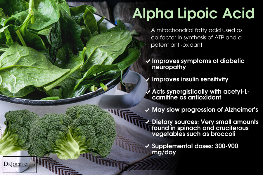 Image result for alpha lipoic acid