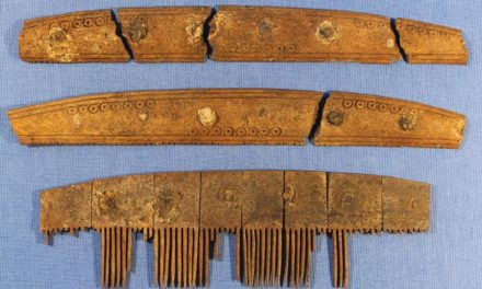 1,200-year-old comb holds clues to Viking runes