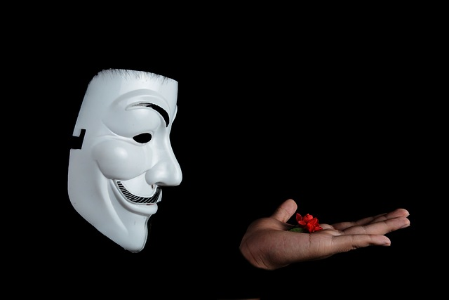 Anonymous- UNMASKED A Message From vIDiUs -Revelation