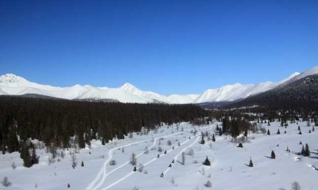 Hiker Mysteriously Vanishes at Russia's Infamous Dyatlov Pass