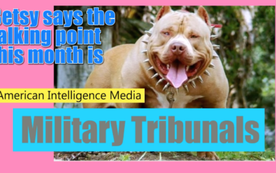 American Intelligence Media: Betsy the Bulldog has an Announcement (On new Executive Order and Military Tribunals) [VIDEO]