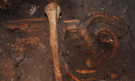 Oldest DNA from Africa offers clues to mysterious ancient culture