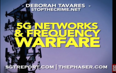 Deborah Tavares on SGT Report: KILL GRID: 5G Networks And Frequency Warfare [VIDEO]