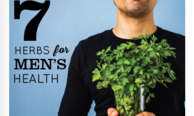 7 Herbs for Men's Sexual Health