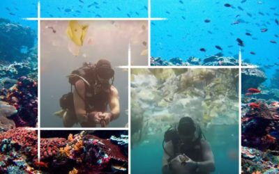 DROWNING IN PLASTIC OFF THE BALI COAST