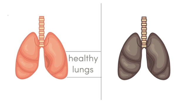 5 Foods That Detox And Heal Your Lungs Naturally