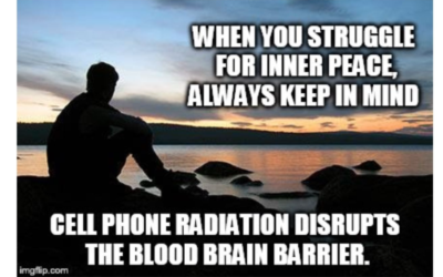 Seeking Inner Peace? Research Has Proven that WiFi Disrupts The Blood-Brain Barrier and Can Reduce Impulse Control