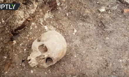 Buried deep: Nearly 30 graves containing possible plague victims uncovered in Tula, Russia [VIDEO]