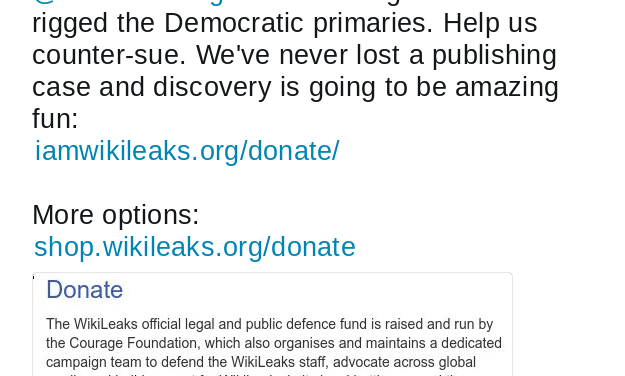 """Wikileaks is Counter-suing the DNC, claims """"Discovery will be fun"""""""