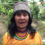 89-Year-Old 'Wise Woman' Indigenous Leader Murdered [VIDEO]
