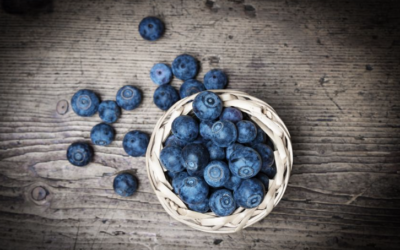 Blueberries Protect Against Top 2 Killer Diseases