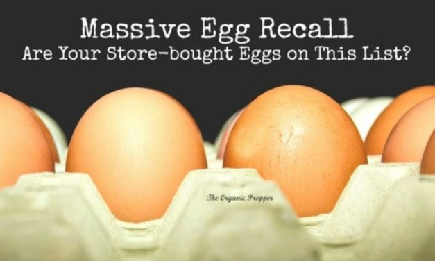 Massive Egg Recall: Are Your Store-Bought Eggs On This List?