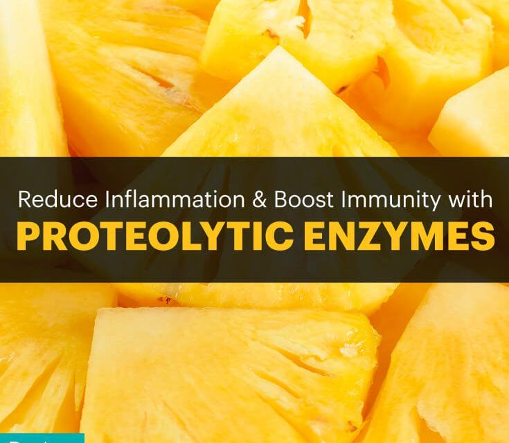 Proteolytic Enzymes Reduce Inflammation and Boost Immunity