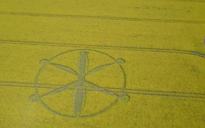 West Knoyle CROP CIRCLE MAY 2018 [VIDEOS]