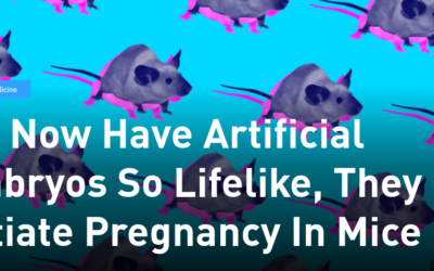We Now Have Artificial Embryos So Lifelike, They Initiate Pregnancy In Mice