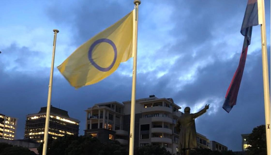 New Zealand becomes first country to fly intersex flag at Parliament