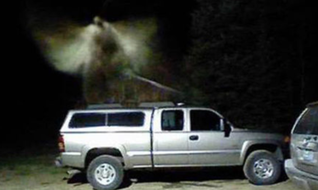 Miracle or Mothman? Security camera captures image of winged creature in Michigan