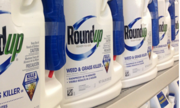 Is Monsanto going down like Big Tobacco? FAKE SCIENCE about to be exposed on a global scale