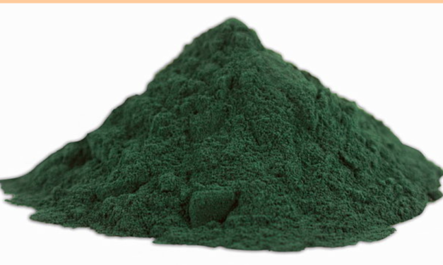 Spirulina Superfood DIY Micro-Farm Prevents Starvation In Tough Times