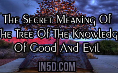 The Secret Meaning Of The Tree Of The Knowledge Of Good And Evil