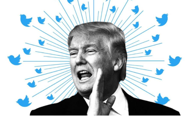 Federal Judge Rules Trump Cannot Block Americans on Twitter – Here's Why It Backfires