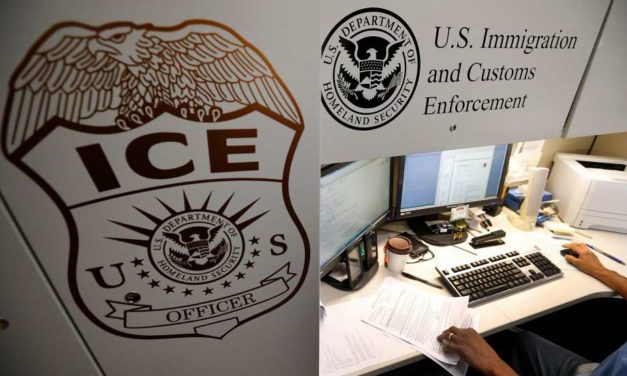 WikiLeaks publishes identities and information about ICE employees amid intensifying anger