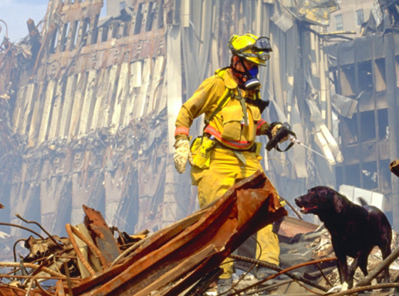 I Represent 9/11 Victims Battling Over 70 Forms of Cancer. Their Fate Is in Congress' Hands