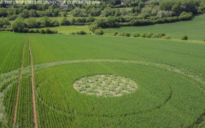 Intriguing New Crop Circle Discovered in England [VIDEOS]