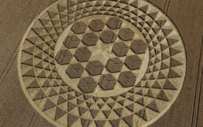 ARCTURIANS EXPLAIN CROP CIRCLES: THEIR PURPOSE AND HOW THEY ARE MADE [VIDEO]