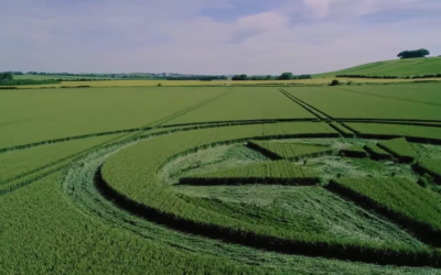 This Interesting New Crop Circle Was Just Discovered in The UK [VIDEO]