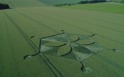 Yarnbury Castle CROP CIRCLE  [VIDEO]