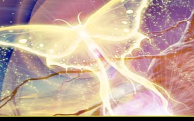 Diane Canfield: Energy Update: Fatigue Wave Arriving / Massive Insights / Psychic Skills Enhanced