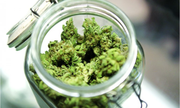16 Scientific Benefits of Weed – Health Effects of Cannabis